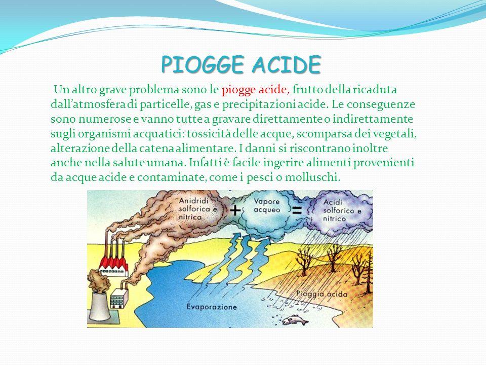 Un altro grave problema sono le piogge acide, frutto della ricaduta dall'atmosfera di particelle, gas e precipitazioni acide.