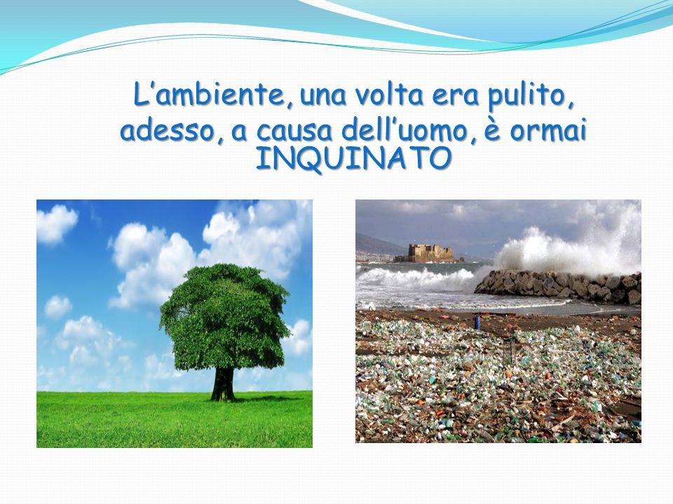 L'ambiente, una volta era pulito, adesso, a causa dell'uomo, è ormai INQUINATO
