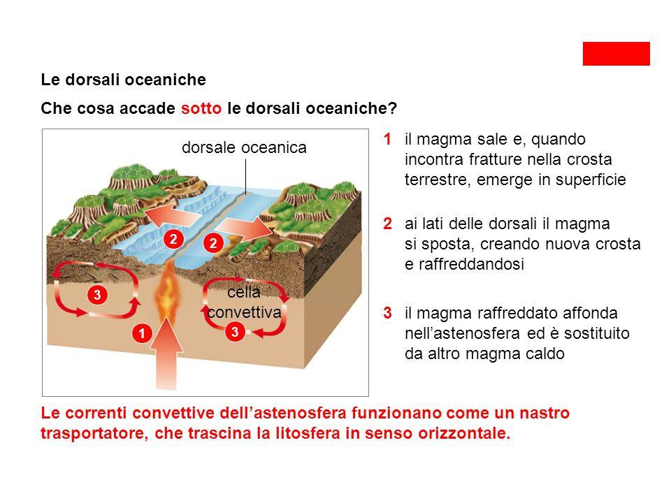 Le dorsali oceaniche Che cosa accade sotto le dorsali oceaniche.