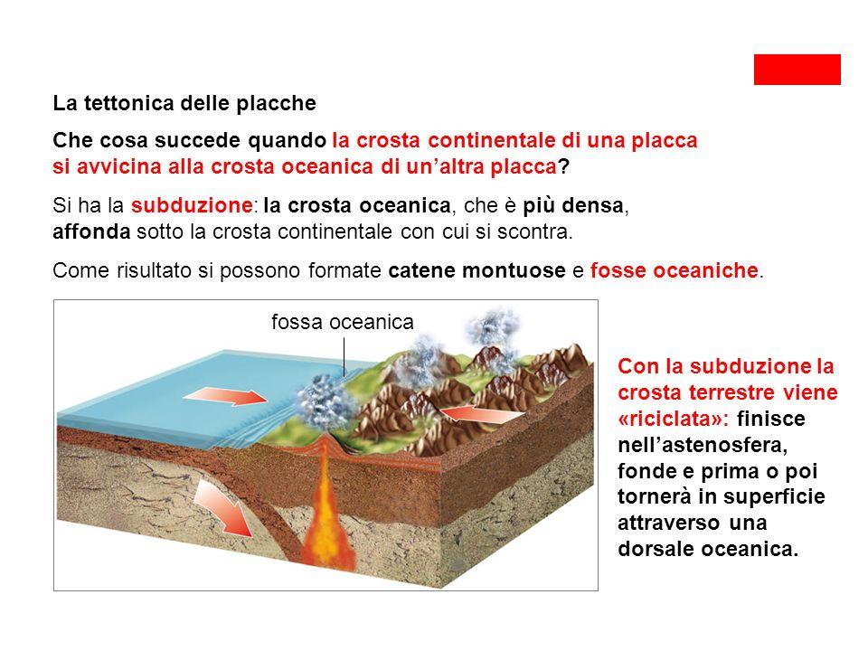 La tettonica delle placche Che cosa succede quando la crosta continentale di una placca si avvicina alla crosta oceanica di un'altra placca.