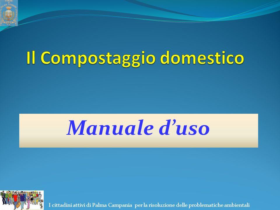 I cittadini attivi di Palma Campania per la risoluzione delle problematiche ambientali Manuale d'uso