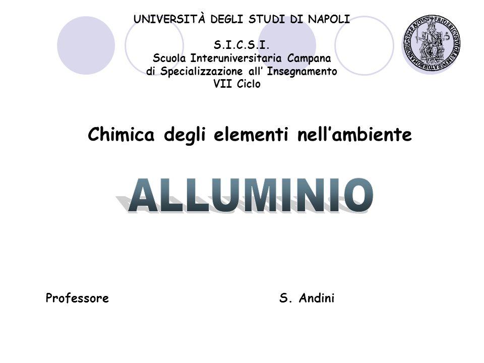 Chimica degli elementi nell'ambiente UNIVERSITÀ DEGLI STUDI DI NAPOLI S.I.C.S.I.