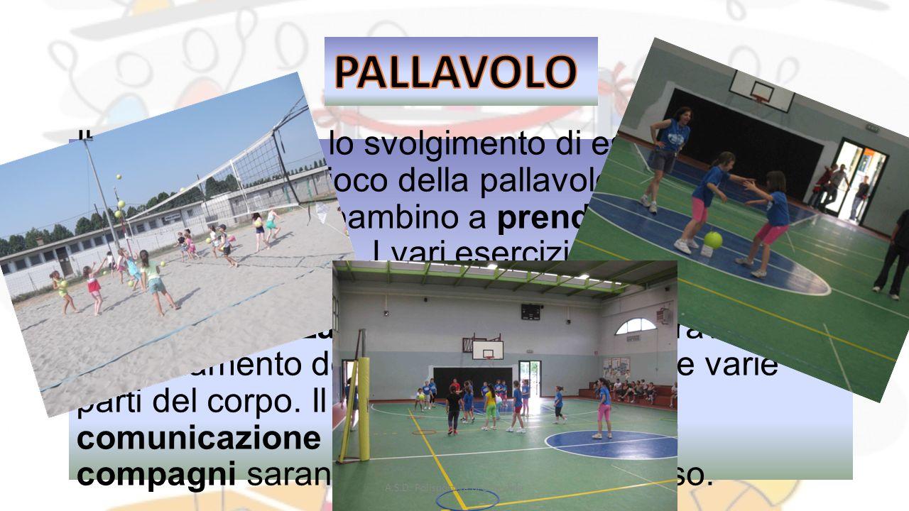 Il corso prevede lo svolgimento di esercizi propedeutici al gioco della pallavolo che insegneranno al bambino a prendere confidenza con lo strumento.