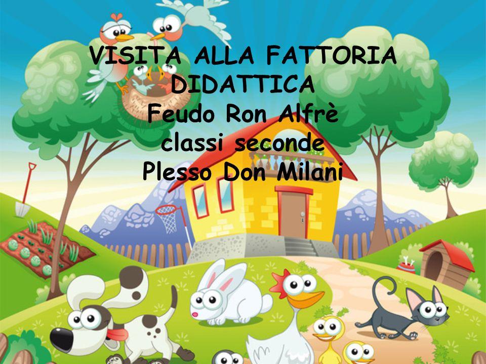 VISITA ALLA FATTORIA DIDATTICA Feudo Ron Alfrè classi seconde Plesso Don Milani