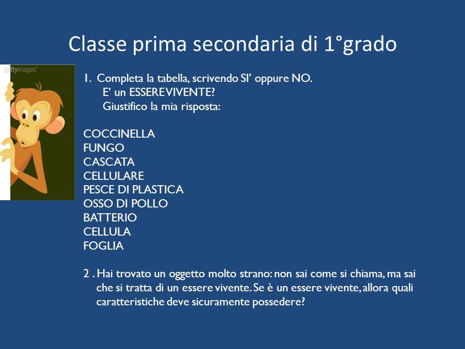 Classe prima secondaria di 1°grado 1. Completa la tabella, scrivendo SI' oppure NO. E' un ESSERE VIVENTE? Giustifico la mia risposta: COCCINELLA FUNGO