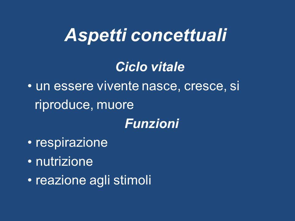 Aspetti concettuali Ciclo vitale un essere vivente nasce, cresce, si riproduce, muore Funzioni respirazione nutrizione reazione agli stimoli