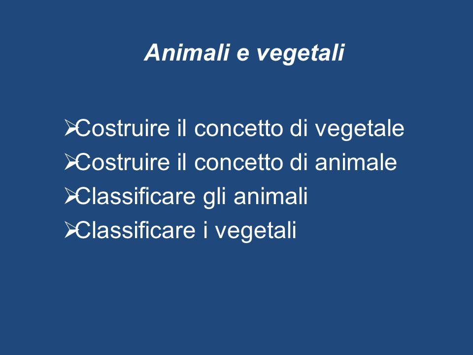 Animali e vegetali  Costruire il concetto di vegetale  Costruire il concetto di animale  Classificare gli animali  Classificare i vegetali