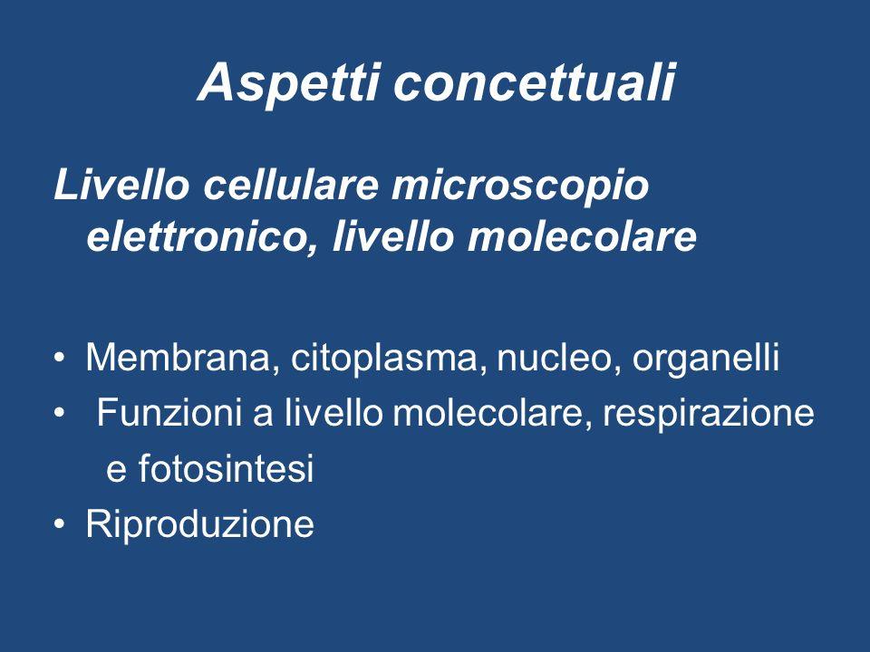 Aspetti concettuali Livello cellulare microscopio elettronico, livello molecolare Membrana, citoplasma, nucleo, organelli Funzioni a livello molecolar