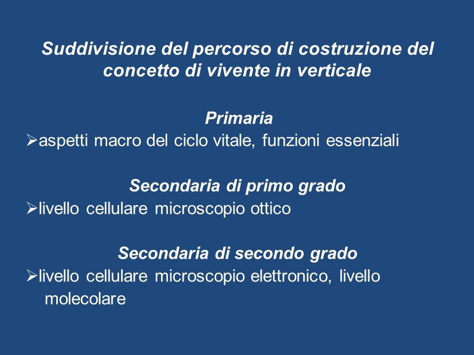 Suddivisione del percorso di costruzione del concetto di vivente in verticale Primaria  aspetti macro del ciclo vitale, funzioni essenziali Secondari
