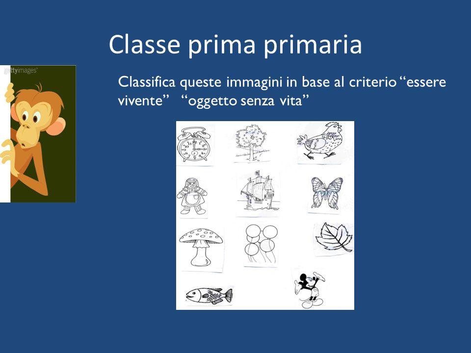 """Classe prima primaria Classifica queste immagini in base al criterio """"essere vivente"""" """"oggetto senza vita"""""""