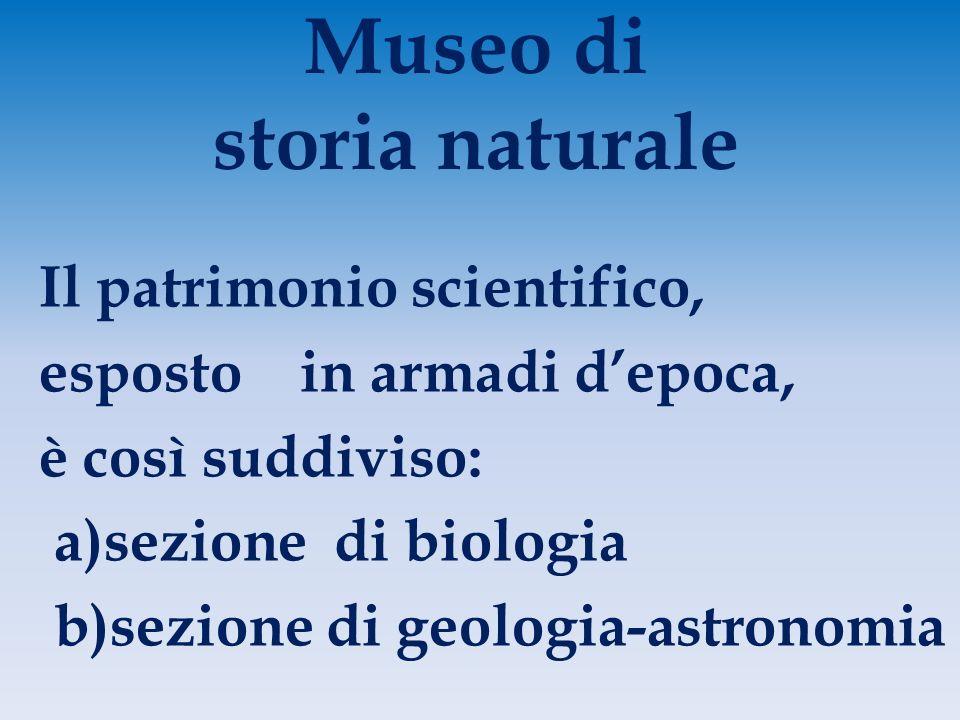 Museo di storia naturale Il patrimonio scientifico, esposto in armadi d'epoca, è così suddiviso: a)sezione di biologia b)sezione di geologia-astronomia