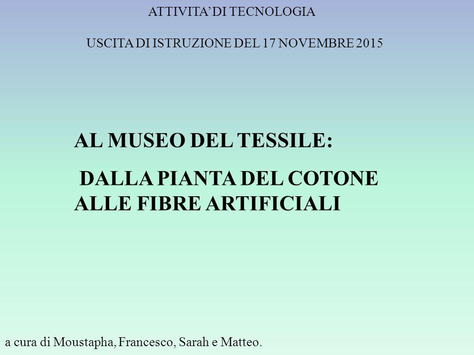 ATTIVITA' DI TECNOLOGIA a cura di Moustapha, Francesco, Sarah e Matteo.