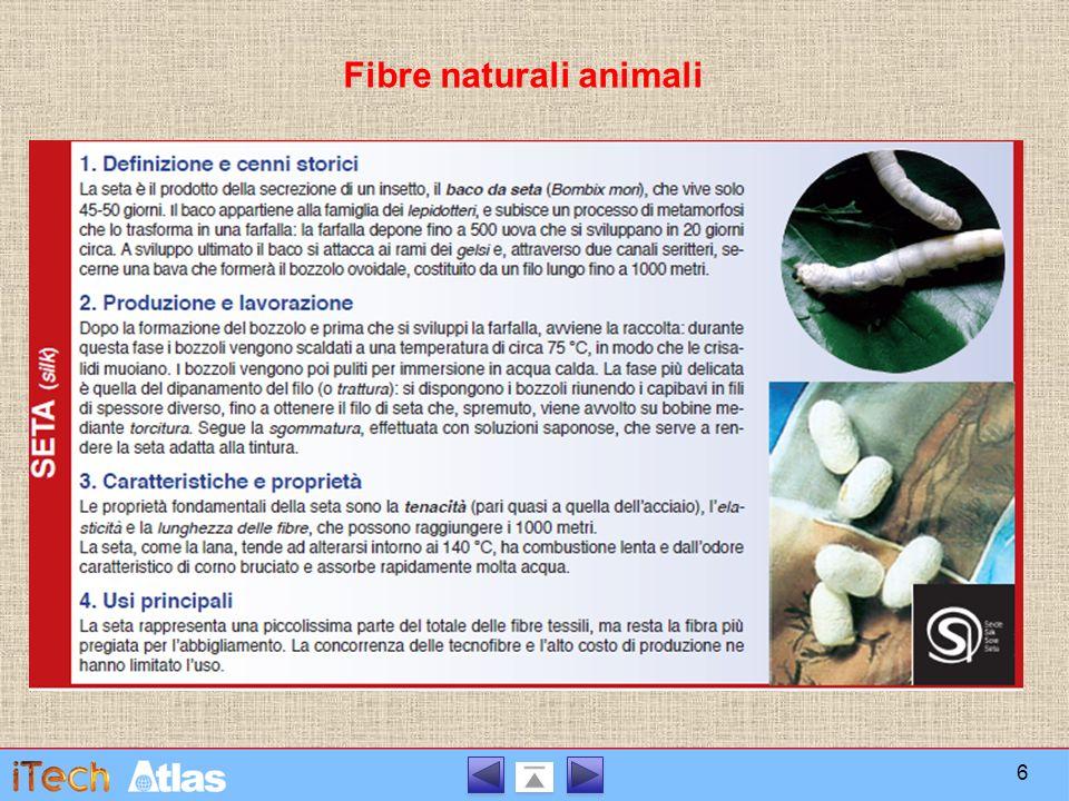 Fibre artificiali Le fibre tessili artificiali si ottengono per trasformazione chimico-meccanica di sostanze naturali come la cellulosa, le proteine animali, le alghe, il vetro.