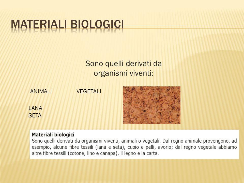 Sono quelli derivati da organismi viventi: ANIMALI VEGETALI LANA SETA