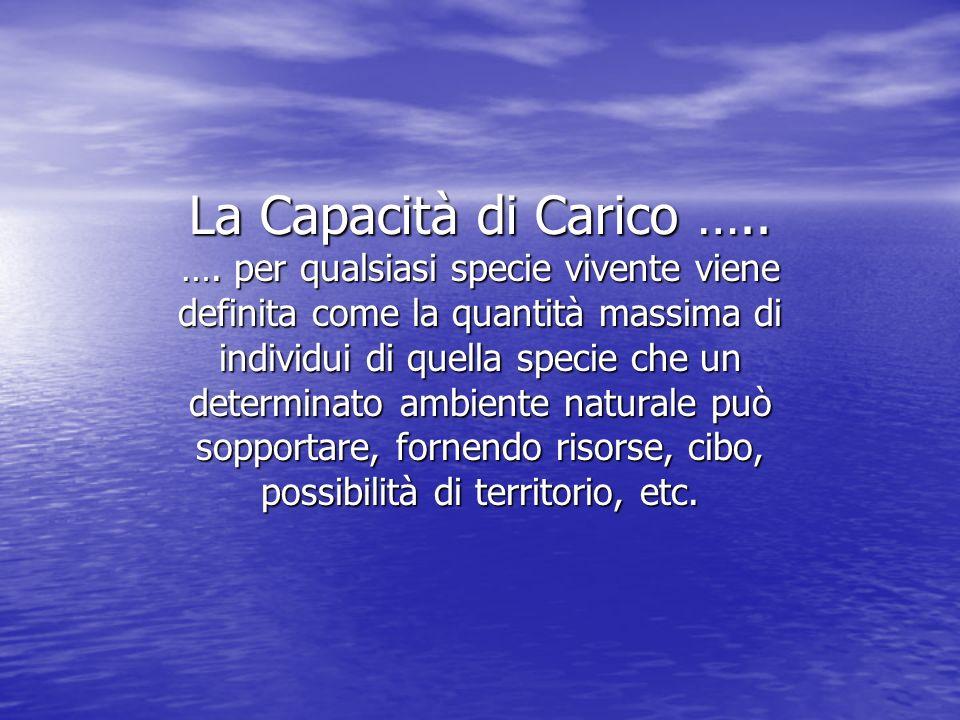 La Capacità di Carico …..….