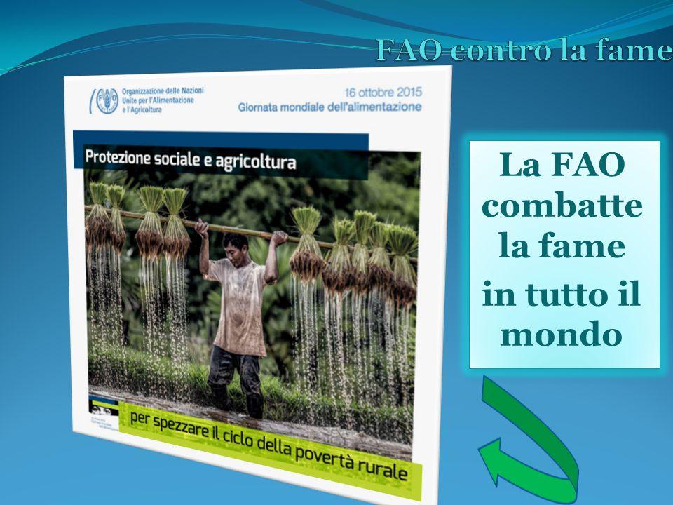 La FAO combatte la fame in tutto il mondo