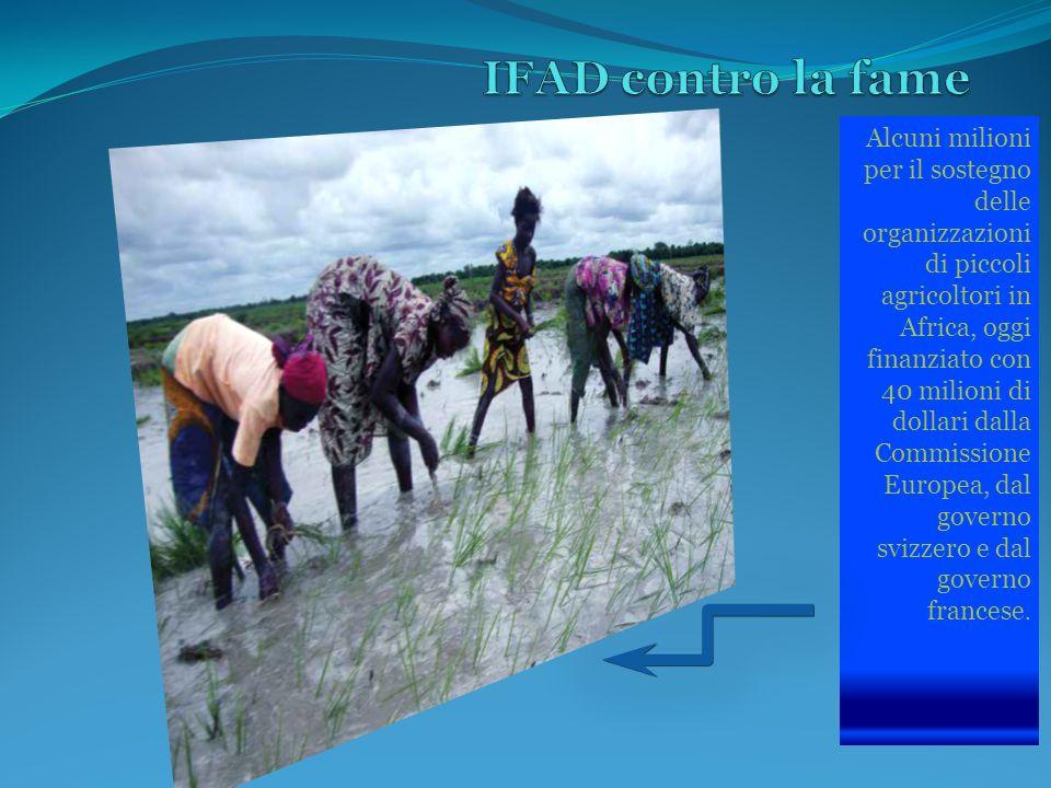 Alcuni milioni per il sostegno delle organizzazioni di piccoli agricoltori in Africa, oggi finanziato con 40 milioni di dollari dalla Commissione Europea, dal governo svizzero e dal governo francese.