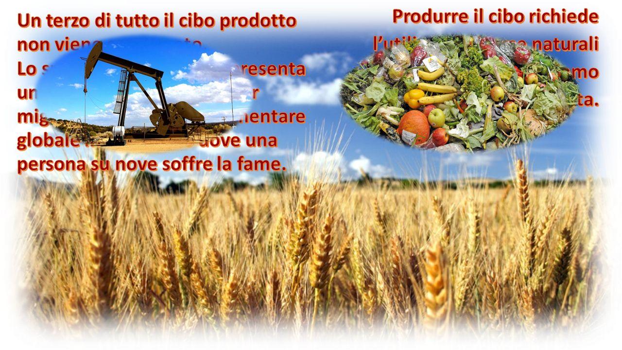 Durante le guerre, il cibo diventa talvolta un'arma di guerra.