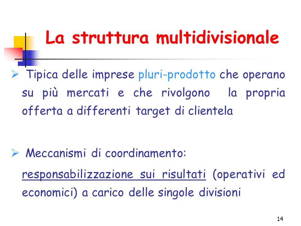 14 La struttura multidivisionale  Tipica delle imprese pluri-prodotto che operano su più mercati e che rivolgono la propria offerta a differenti target di clientela  Meccanismi di coordinamento: responsabilizzazione sui risultati (operativi ed economici) a carico delle singole divisioni