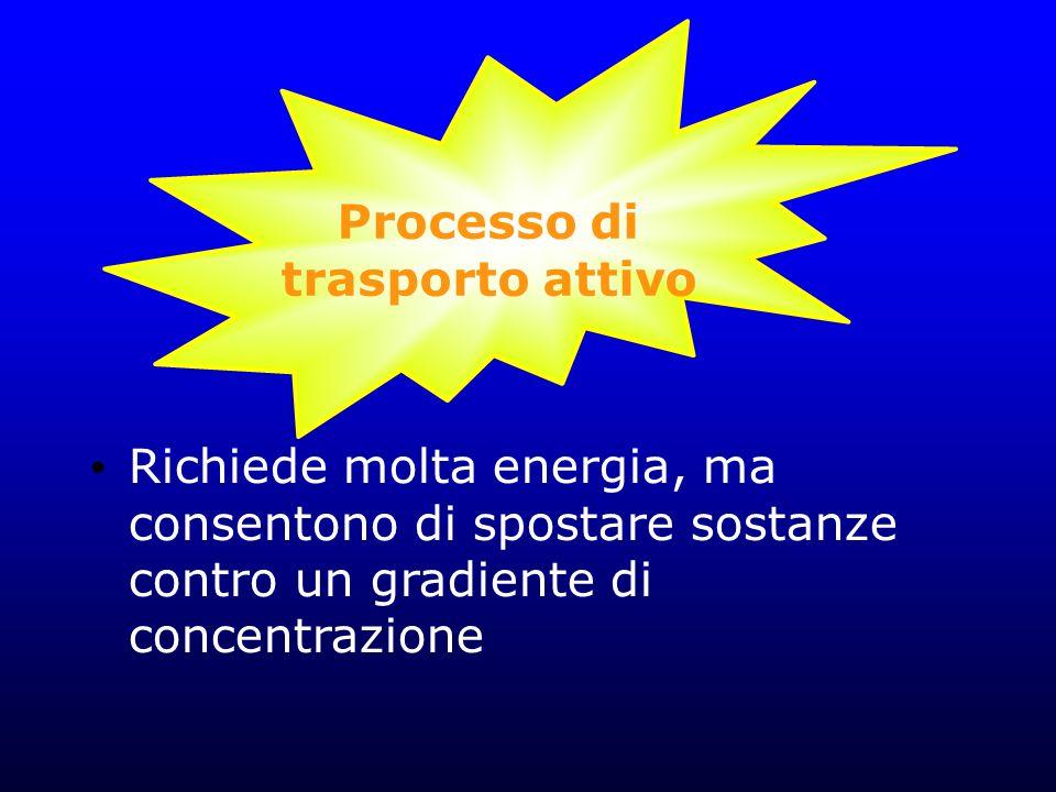 Richiede molta energia, ma consentono di spostare sostanze contro un gradiente di concentrazione Processo di trasporto attivo