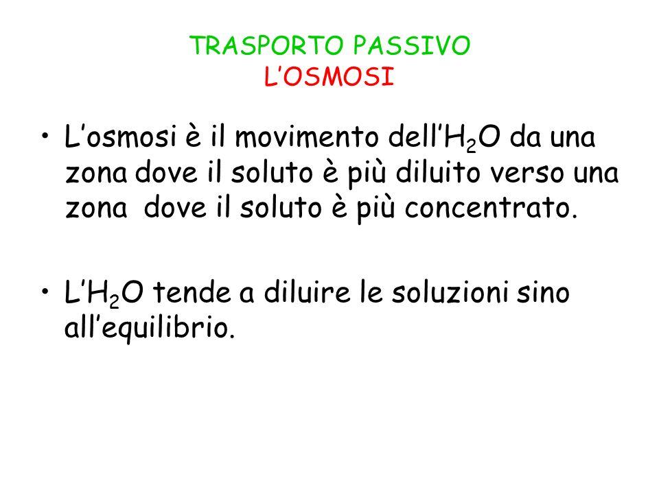 TRASPORTO PASSIVO L'OSMOSI L'osmosi è il movimento dell'H 2 O da una zona dove il soluto è più diluito verso una zona dove il soluto è più concentrato.