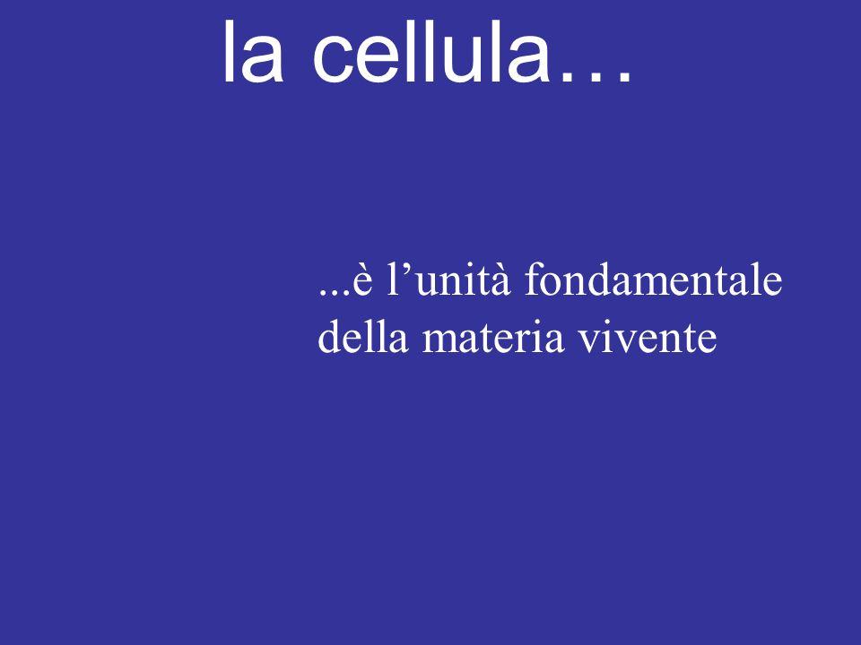 la cellula…...è l'unità fondamentale della materia vivente