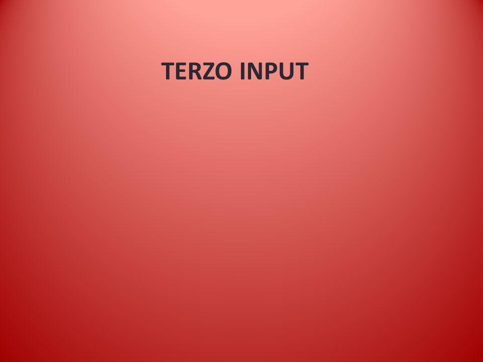 TERZO INPUT