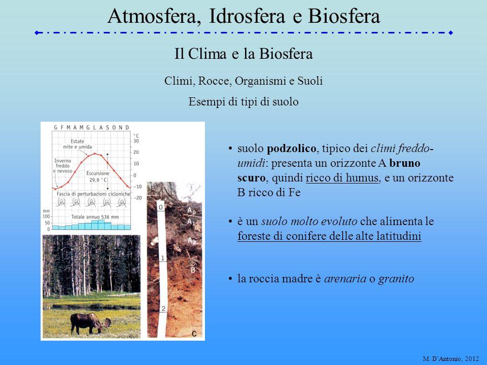 Il Clima e la Biosfera Esempi di tipi di suolo suolo lateritico, tipico dei climi caldi e umidi equatoriale e subtropicale: presenta un orizzonte A non differenziato dall'orizzonte B per la scarsità di humus; il colore rossastro è tipico, e indica la precipitazione di ossidi di Al e Fe Climi, Rocce, Organismi e Suoli è un suolo evoluto che alimenta le foreste equatoriali, ricche di vegetazione la roccia madre è generalmente vulcanica Atmosfera, Idrosfera e Biosfera M.