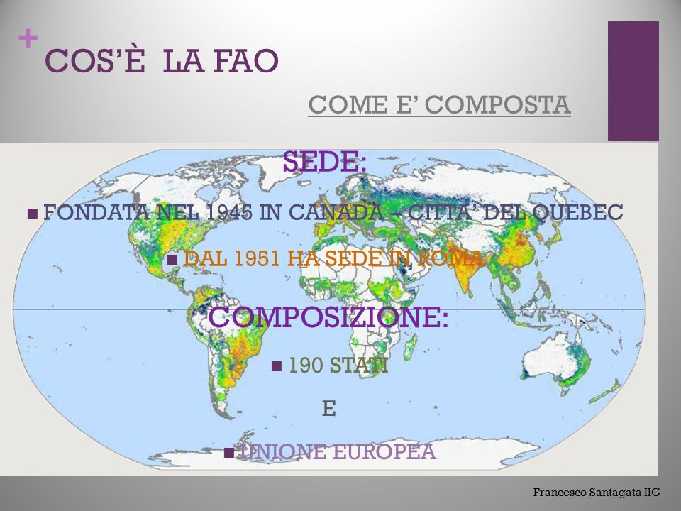 + COS'È LA FAO CHE RUOLO SVOLGE IL SUO SCOPO E' DI: COMBATTERE LA FAME NEL MONDO ACCRESCERE I LIVELLI DI NUTRIZIONE MIGLIORARE LA PRODUTTIVITA' AGRICOLA MIGLIORARE LA QUALITA' DELLA VITA DELLE POPOLAZIONI RURALI CONTRIBUIRE ALA CRESCITA ECONOMIC A Francesco Santagata IIG