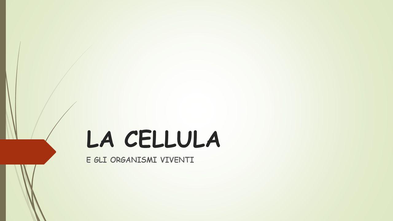 LA CELLULA E GLI ORGANISMI VIVENTI