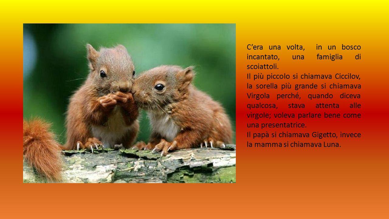 C'era una volta, in un bosco incantato, una famiglia di scoiattoli.
