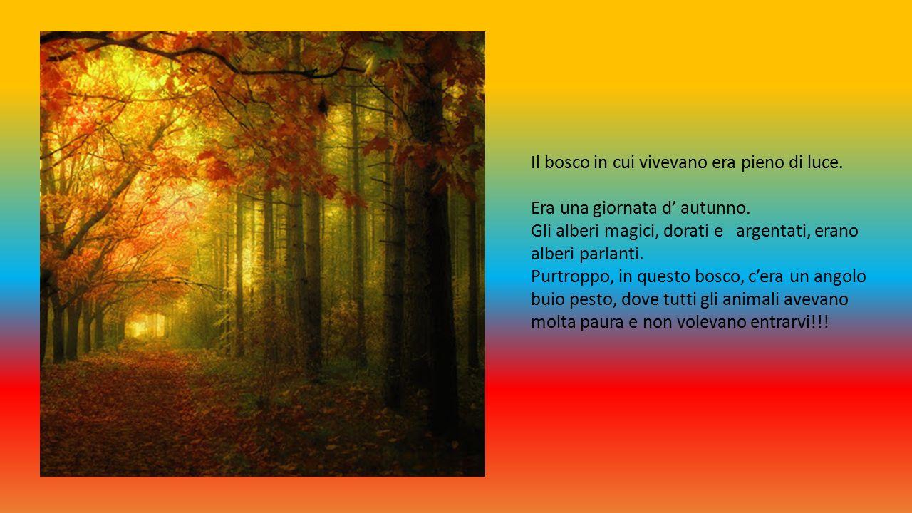 Il bosco in cui vivevano era pieno di luce. Era una giornata d' autunno.
