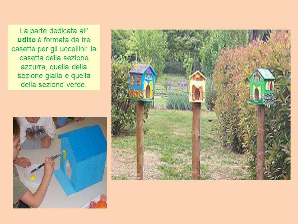 La parte dedicata all' udito è formata da tre casette per gli uccellini: la casetta della sezione azzurra, quella della sezione gialla e quella della sezione verde.