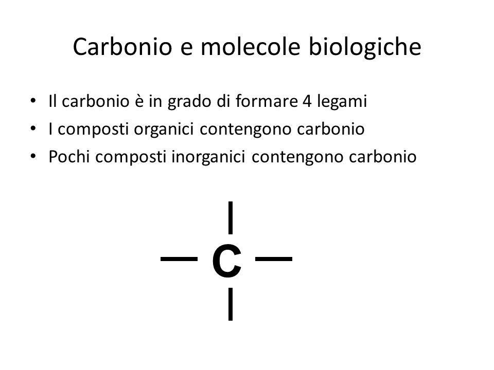 Carbonio e molecole biologiche Il carbonio è in grado di formare 4 legami I composti organici contengono carbonio Pochi composti inorganici contengono carbonio C