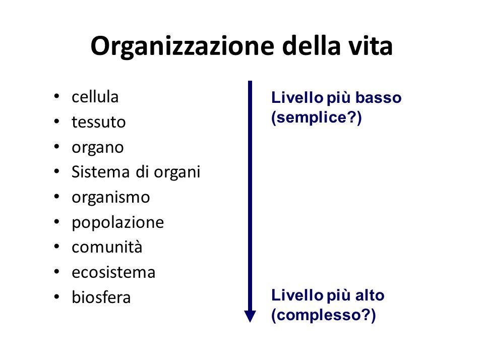 Organizzazione della vita cellula tessuto organo Sistema di organi organismo popolazione comunità ecosistema biosfera Livello più basso (semplice?) Livello più alto (complesso?)