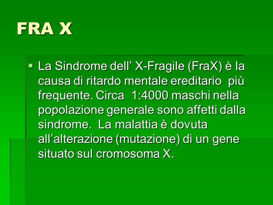 FRA X  La Sindrome dell' X-Fragile (FraX) è la causa di ritardo mentale ereditario più frequente.