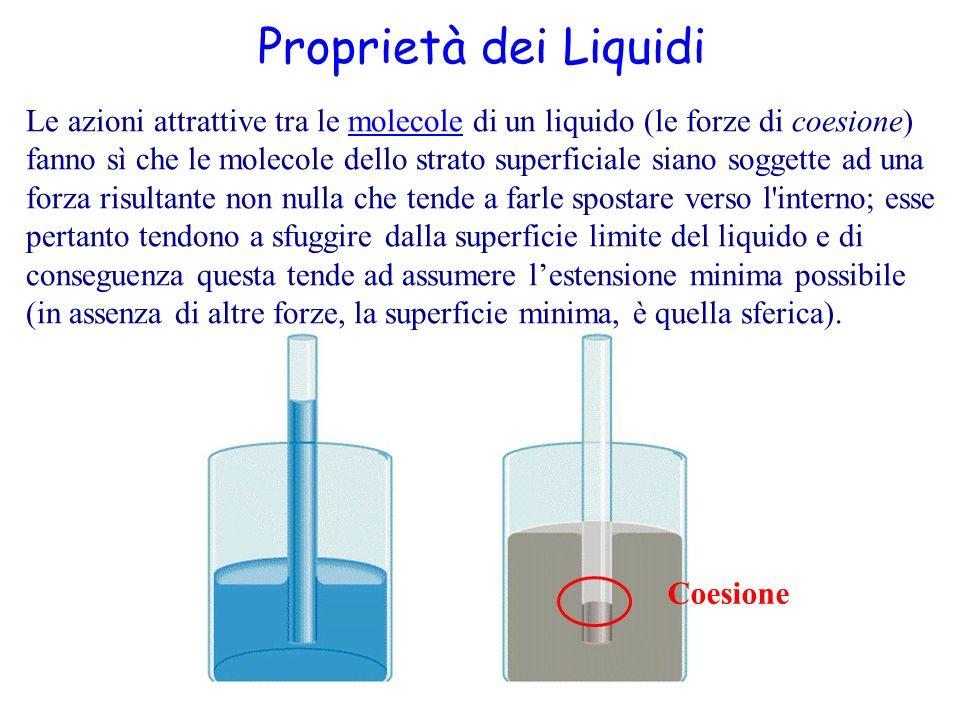 non è più sufficiente considerare le sole forze di coesione, in quanto la presenza di un altro corpo ha influenza sui valori della tensione, nel senso che le molecole di questo svolgono anch esse delle azioni (le forze di adesione) sulle molecole dello strato superficiale del liquido.