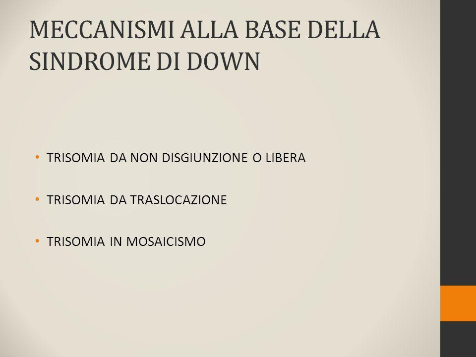 MECCANISMI ALLA BASE DELLA SINDROME DI DOWN TRISOMIA DA NON DISGIUNZIONE O LIBERA TRISOMIA DA TRASLOCAZIONE TRISOMIA IN MOSAICISMO