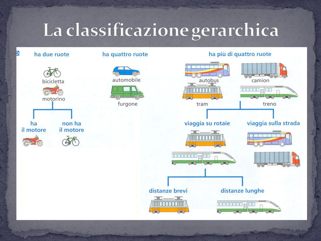 La classifica gerarchica si basa su più livelli di classificazione; troviamo prima caratteristiche generali poi caratteristiche via via più specifiche Queste delimitano gruppi più ristretti fino ad arrivare a comprendere anche un solo tipo Possiamo quindi individuare caratteri generali di somiglianza e caratteri distintivi che identificano singoli oggetti