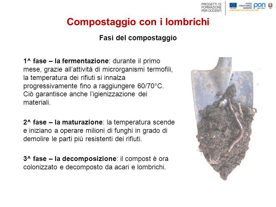 1^ fase – la fermentazione: durante il primo mese, grazie all'attività di microrganismi termofili, la temperatura dei rifiuti si innalza progressivame