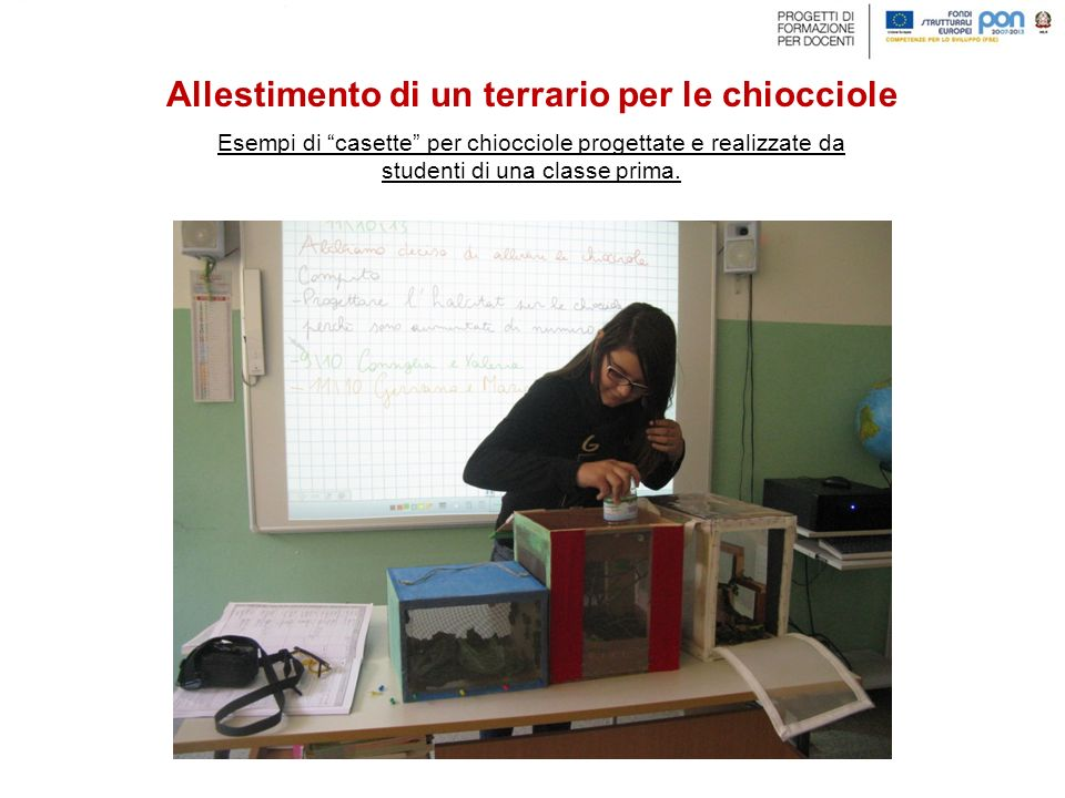 """Esempi di """"casette"""" per chiocciole progettate e realizzate da studenti di una classe prima. Allestimento di un terrario per le chiocciole"""