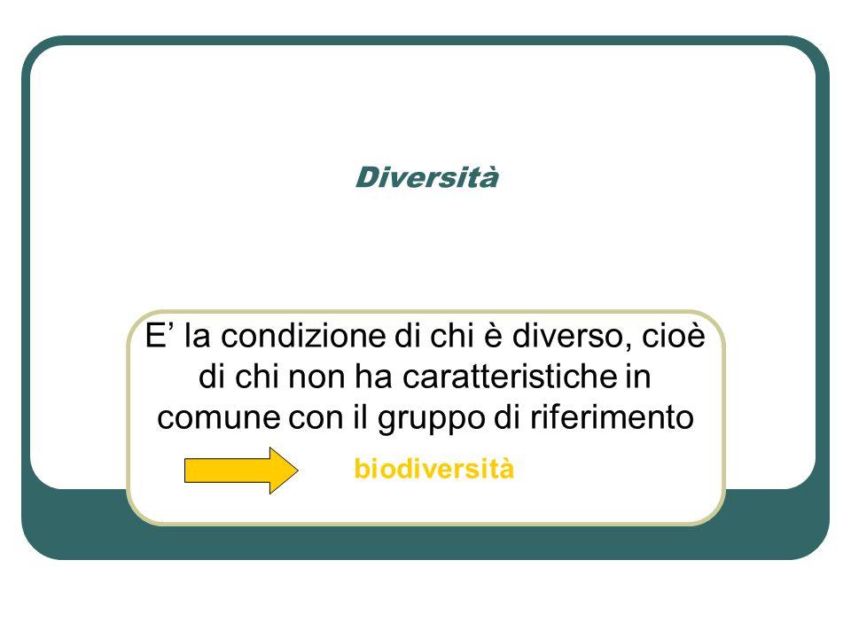 Diversità E' la condizione di chi è diverso, cioè di chi non ha caratteristiche in comune con il gruppo di riferimento biodiversità