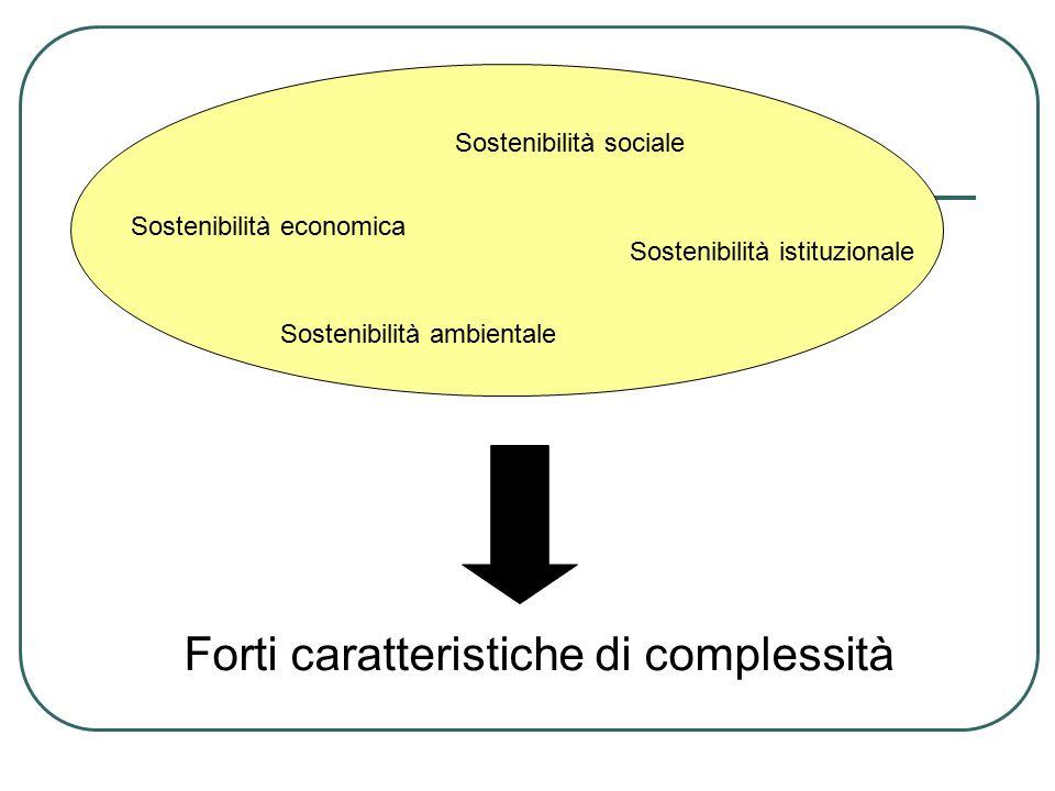 Sostenibilità economica Sostenibilità sociale Sostenibilità ambientale Sostenibilità istituzionale Forti caratteristiche di complessità
