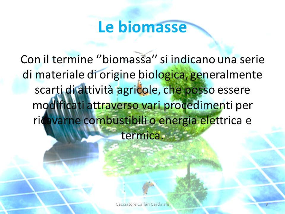 Le biomasse Con il termine ''biomassa'' si indicano una serie di materiale di origine biologica, generalmente scarti di attività agricole, che posso essere modificati attraverso vari procedimenti per ricavarne combustibili o energia elettrica e termica.