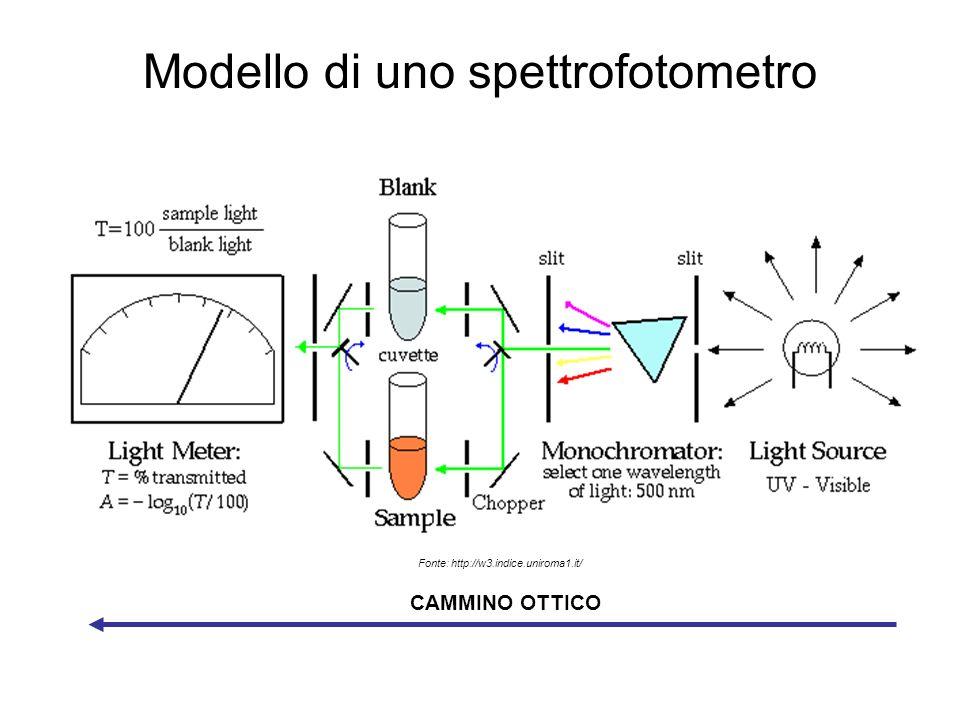 Modello di uno spettrofotometro CAMMINO OTTICO Fonte: http://w3.indice.uniroma1.it/