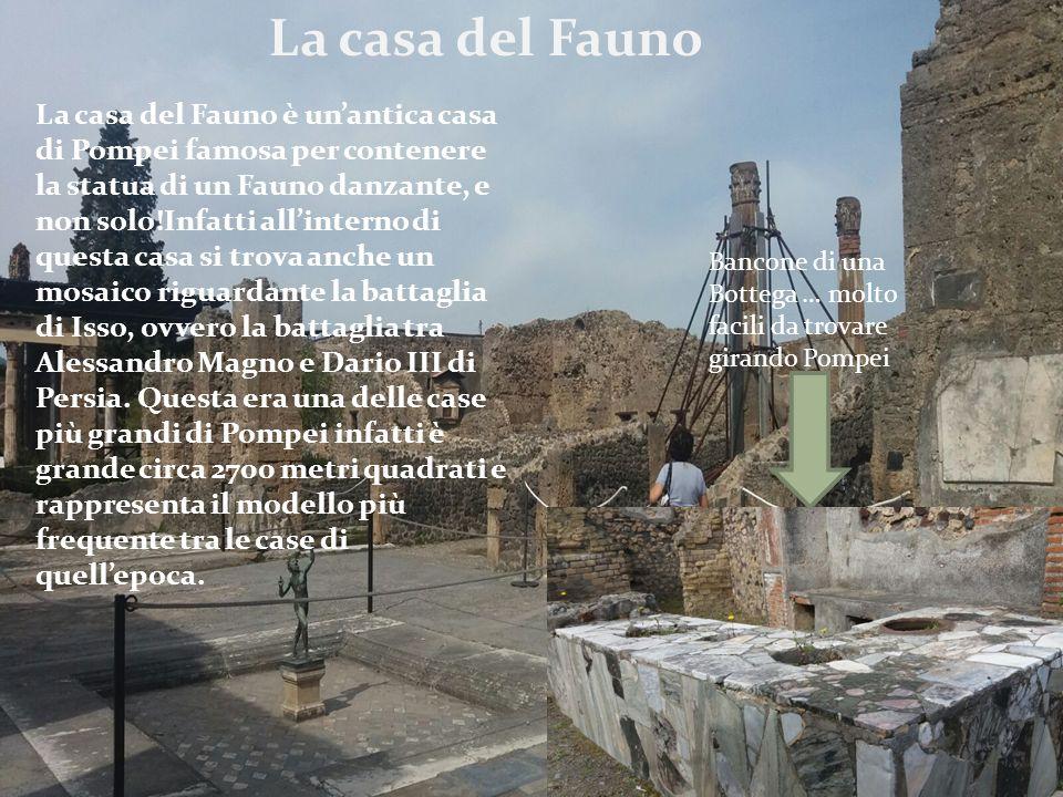 La casa del Fauno La casa del Fauno è un'antica casa di Pompei famosa per contenere la statua di un Fauno danzante, e non solo!Infatti all'interno di questa casa si trova anche un mosaico riguardante la battaglia di Isso, ovvero la battaglia tra Alessandro Magno e Dario III di Persia.