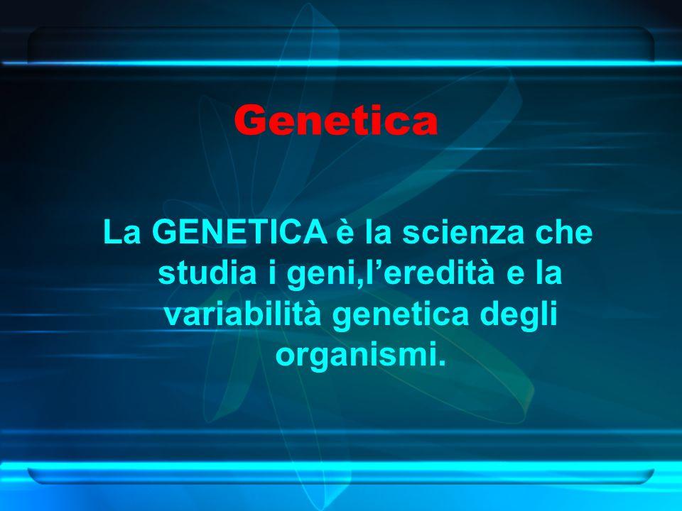 Genetica La GENETICA è la scienza che studia i geni,l'eredità e la variabilità genetica degli organismi.