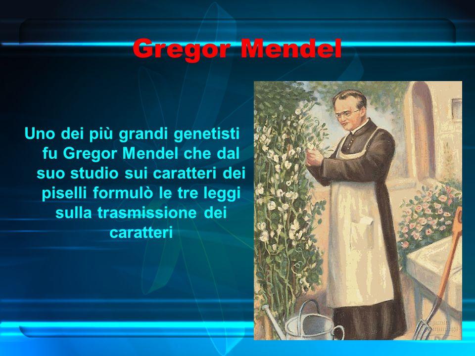 Gregor Mendel Uno dei più grandi genetisti fu Gregor Mendel che dal suo studio sui caratteri dei piselli formulò le tre leggi sulla trasmissione dei caratteri