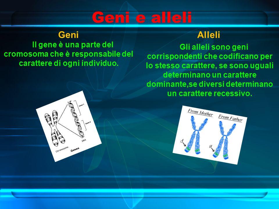 Geni e alleli Geni Il gene è una parte del cromosoma che è responsabile del carattere di ogni individuo.