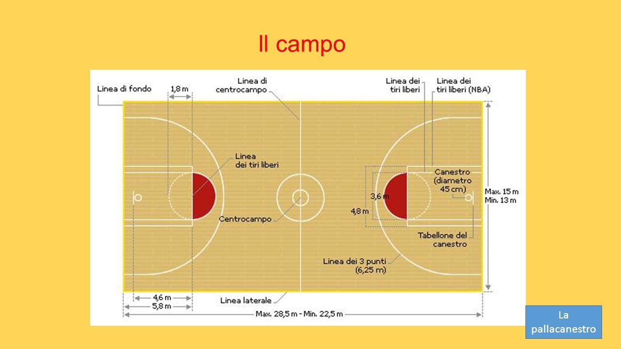 Il campo La pallacanestro